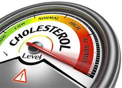 cholesterol guage
